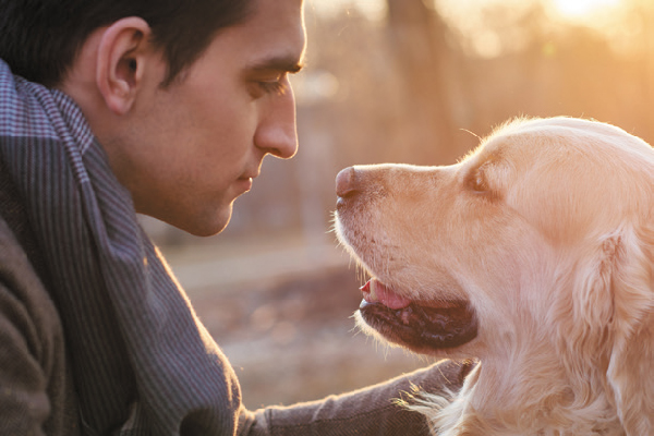 A man and a dog at sunset.
