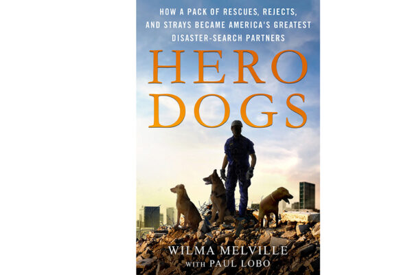 Just published — the story of how Wilma Melville founded the National Disaster Search Dog Foundation (SDF) from a band of shelter dogs and misfits.