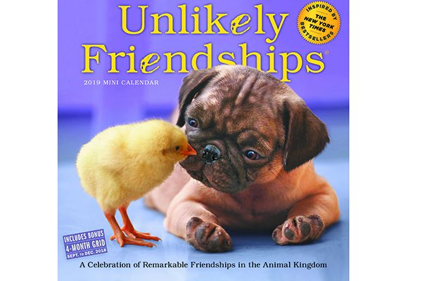 Get a new dog calendar for 2019, like the Unlikely Friendships Mini Calendar.
