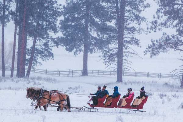 The Resort at Paws Up packs in seasonal activities like sleigh rides and dogsledding.