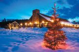 The Resort at Paws Up is just one of many pet-friendly places to stay this holiday.