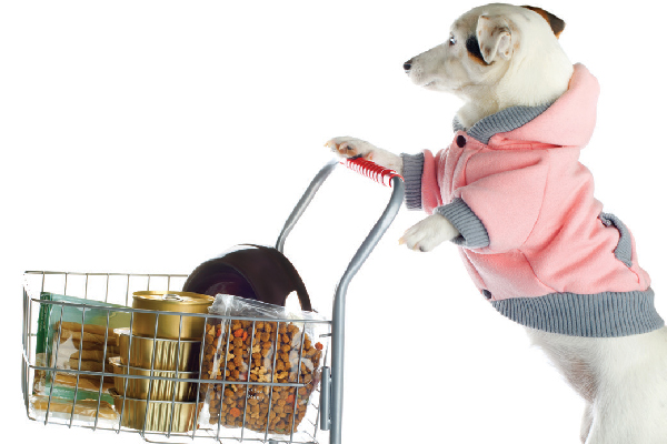 A dog food shopping with a shopping cart.
