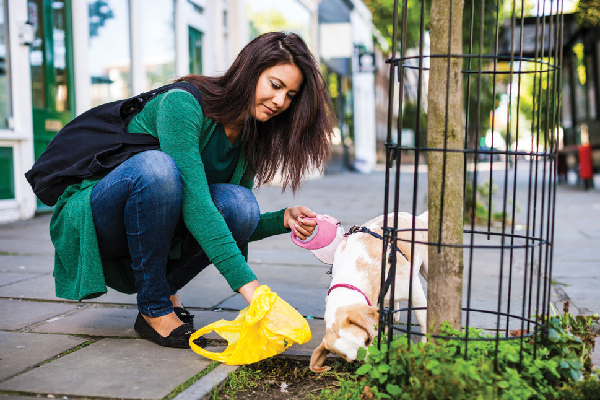 A woman scooping up dog poop in the city.