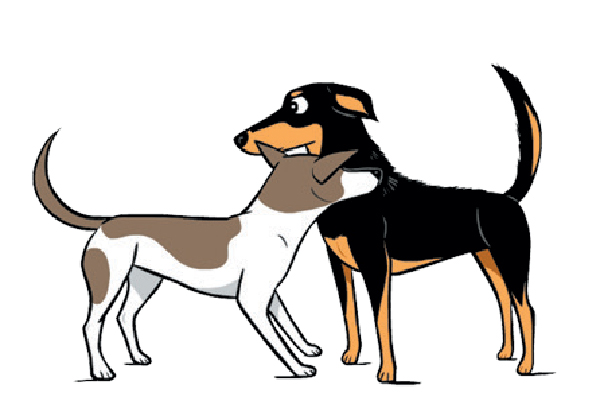 Dog Decoder App, Illustrations by Lili Chin.