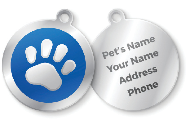 Dog ID tags. Photography ©filo | Getty Images.