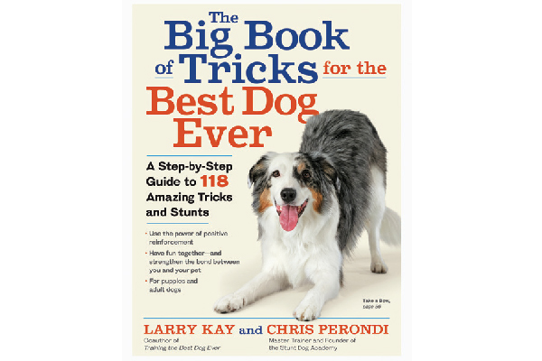 The Big Book of Tricks for the Best Dog Ever.