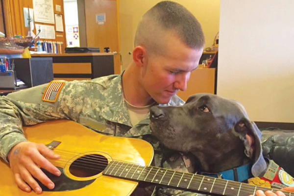Therapy dog and serviceman