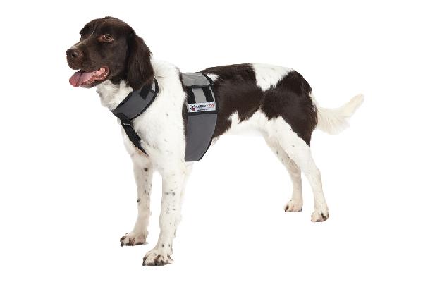 $24.99—$39.99. Cooling Vest and Collar; coolerdog.com