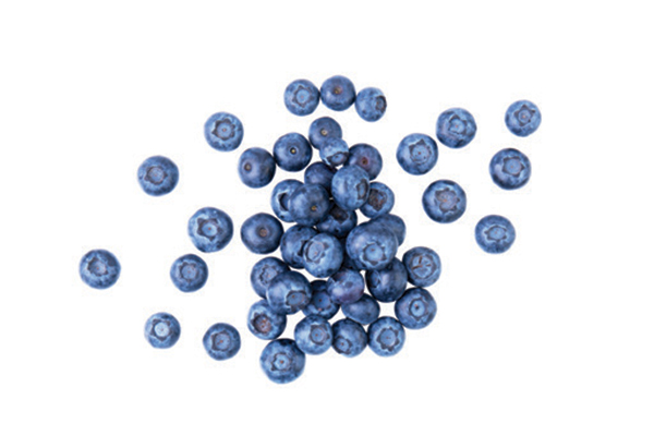 Blueberries are filled with antioxidants. Photography by: ©All Produce | Getty Images