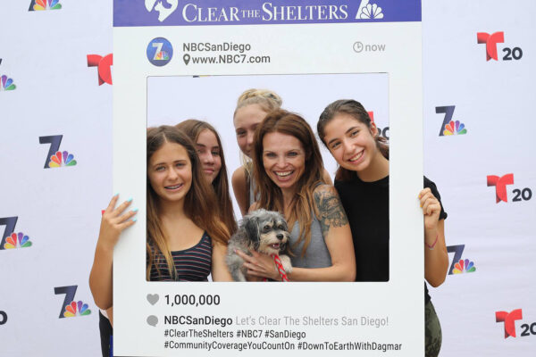 Time again for NBC - and Telemundo-owned stations to team up with shelters across America to host this annual nationwide adoption drive.
