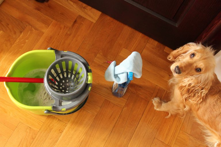 6 Household Cleaning Products That Are