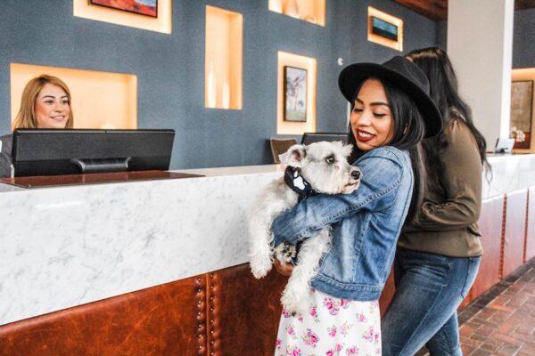 Don't miss Portola Hotel & Spa of Monterey, CA'scharity gala and Doggie Fashion Show.