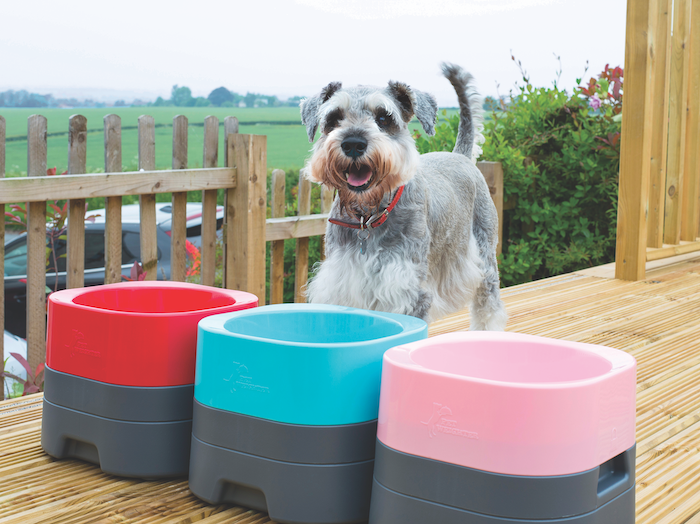 Photo of Make This Season Bright with the Latest Dog Must-Haves