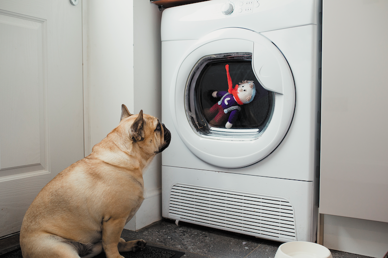 how to clean your dog's toys