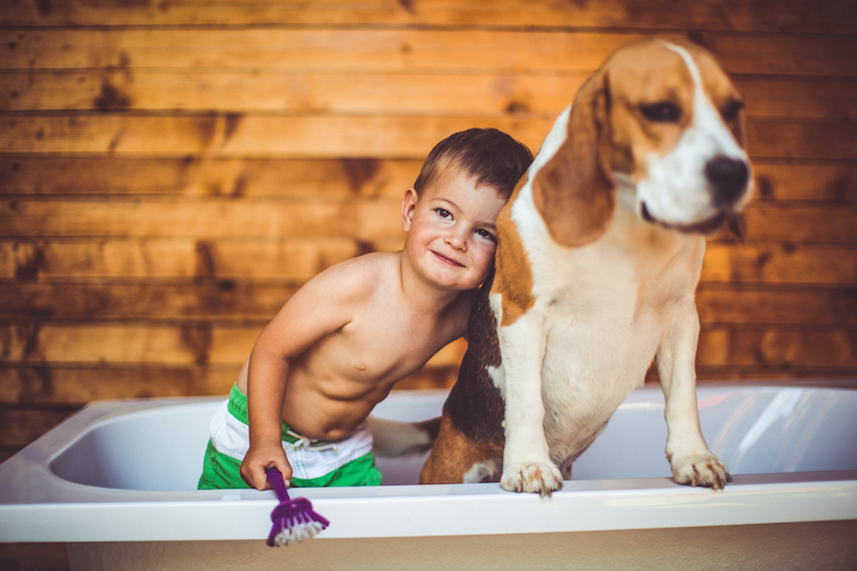 dog chores for kids